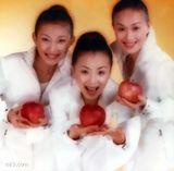 韩美淇写真图片