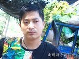 陈剑写真图片