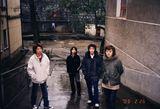 非鱼乐队写真图片
