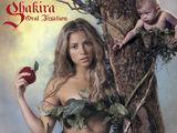 夏奇拉(Shakira)写真图片