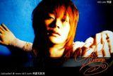 kimeru写真图片