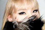 2NE1写真图片